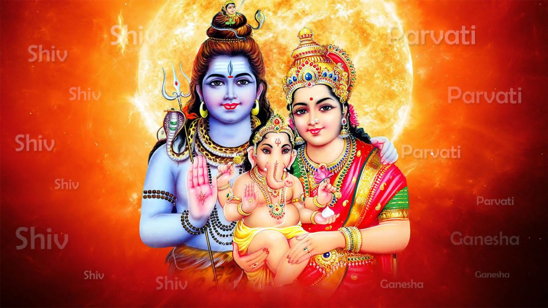 beautiful images of lord shiva and parvati 3d